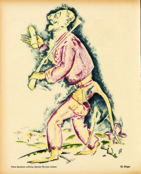 Poeta laureatus militans, Species Mycetes ursinus